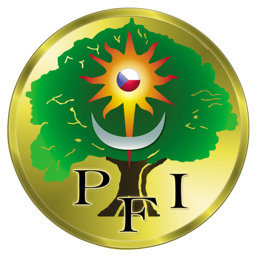 Logo PFIcz